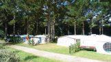Camping Le Chateau du Petit Bois