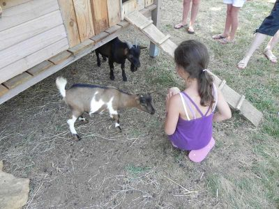 animations camping l offrerie dordogne